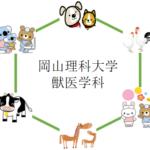 岡山理科大学の獣医学部 獣医学科を徹底分析 | 獣医学科ならプロ家庭教師のロジティー