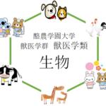 【生物】酪農学園大学獣医学類の入試を徹底分析 | 獣医学科ならプロ家庭教師のロジティー