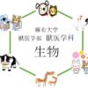 【生物】麻布大学獣医学科を徹底分析 | 獣医学科ならプロ家庭教師のロジティー